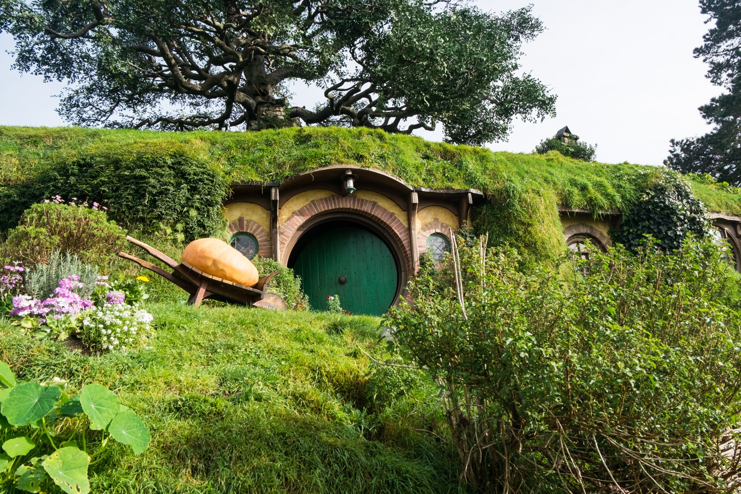 Hobbiton, in the footsteps of Bilbo and Frodo Baggins - I wheel travel